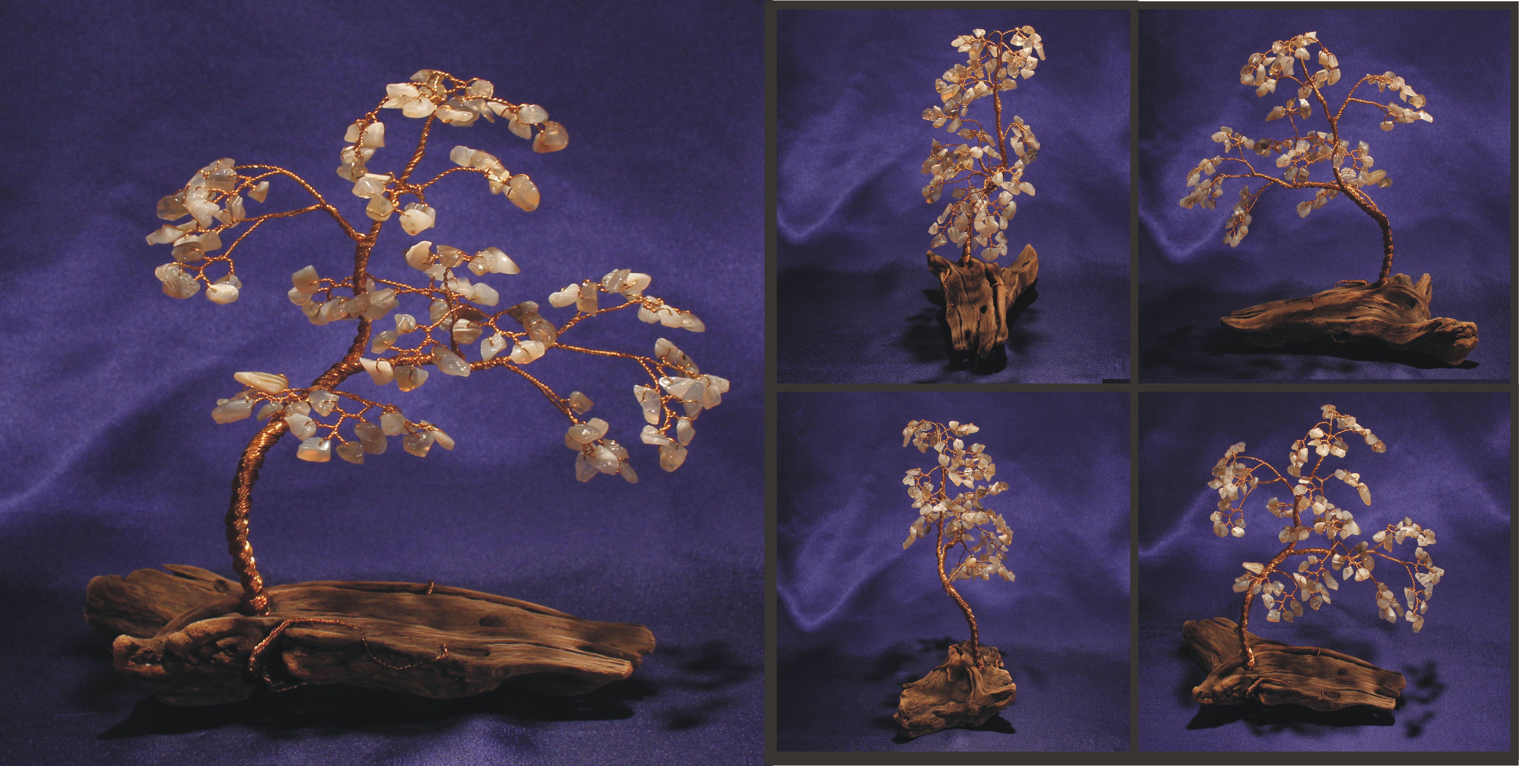 botswana agate on driftwood 1a