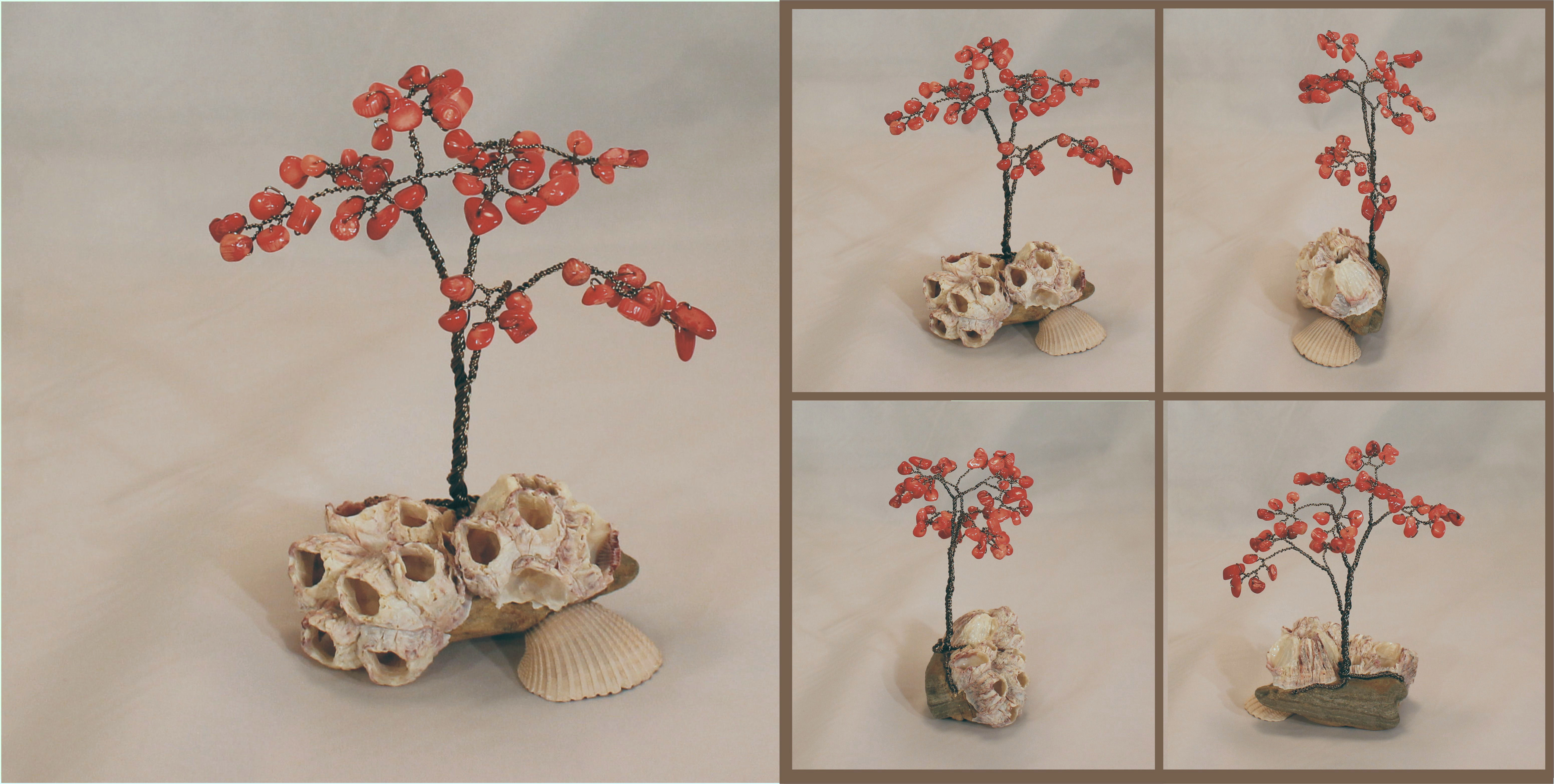 red coral MINI om barnacles 0a