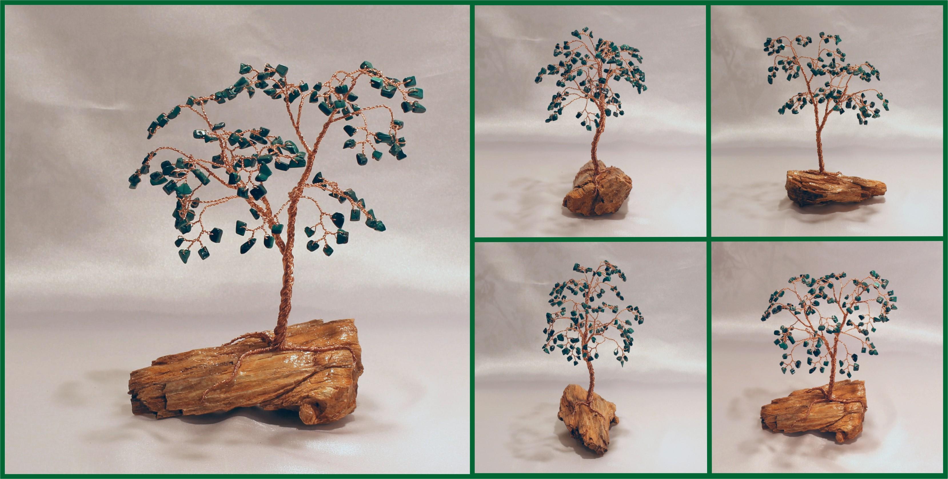 malachite on petrifed wood 1 082016