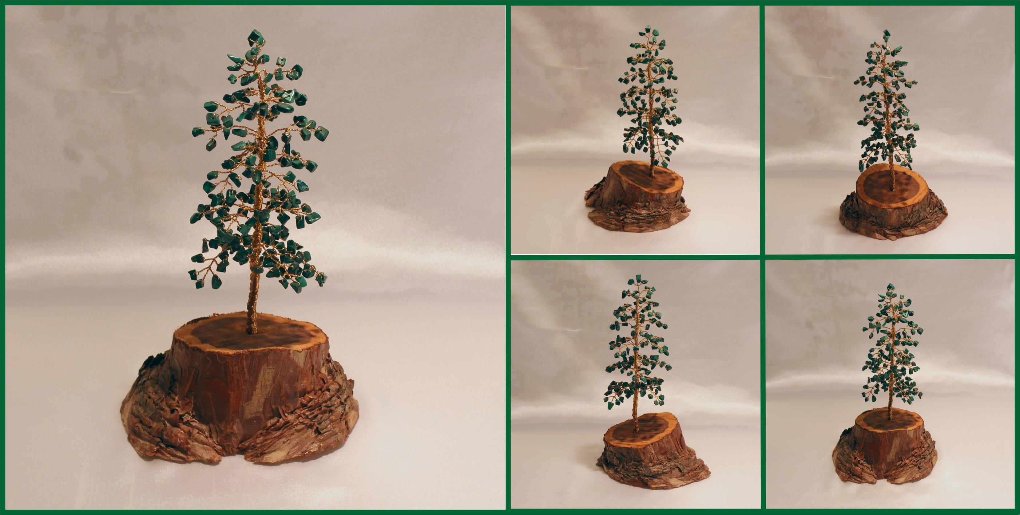 malachite pine tree on pine 1 082016
